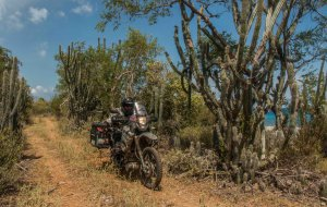 Im Süden der Provinz ist die Landschaft wüstenartig, sehr heiß und trocken. Mich erinnert die Gegend an die Baja California in Mexiko.